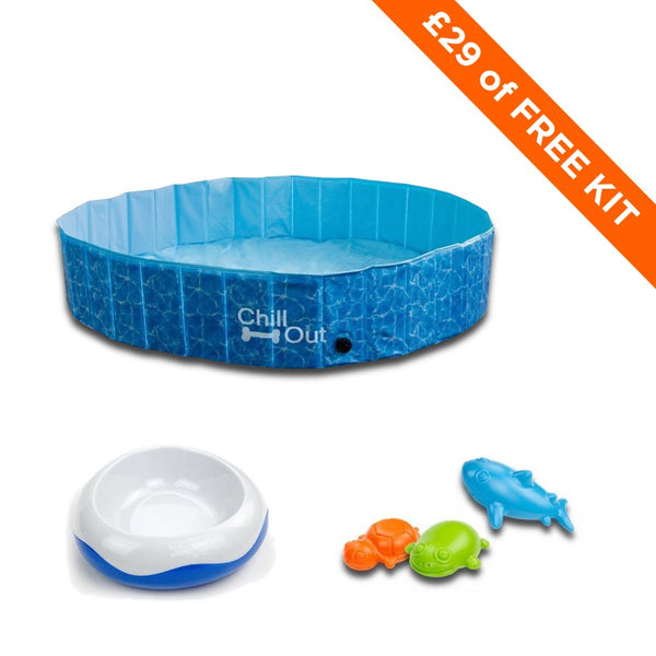 Free Splash Toys with a doggy pool