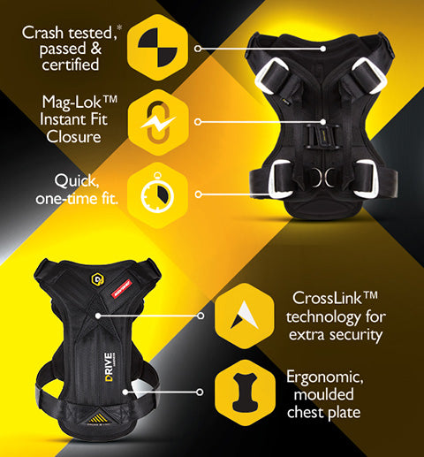 EzyDog Drive Car Harness features