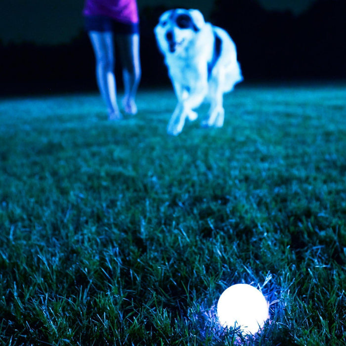 Chuckit! FireFly LED Ball