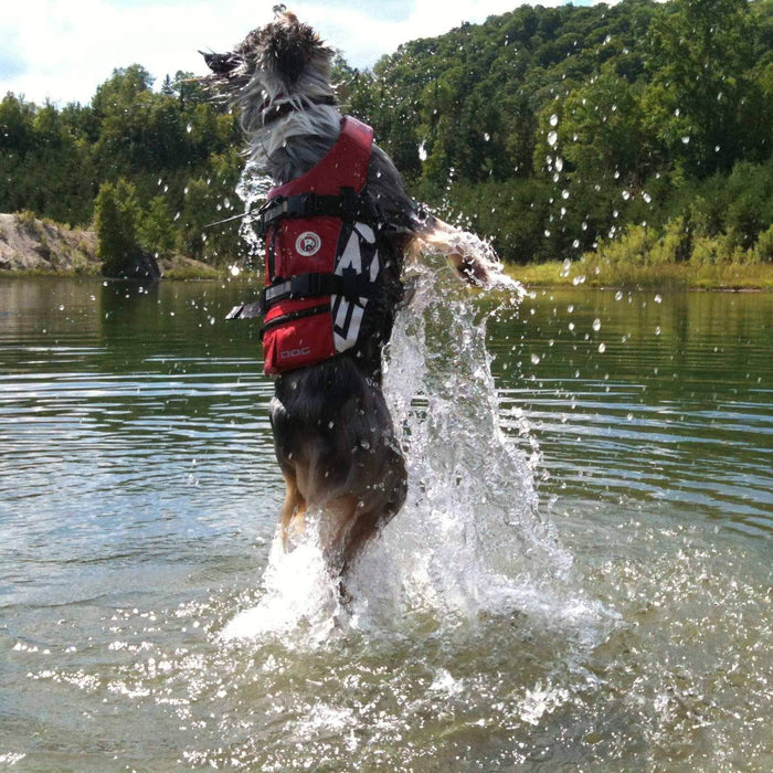 EzyDog Dog Flotation Device (DFD)