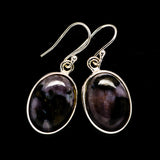 Gabbro Stone Earrings handcrafted by Ana Silver Co - EARR392681