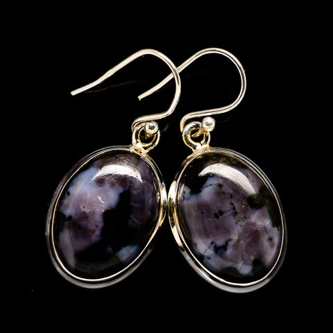 Gabbro Earrings handcrafted by Ana Silver Co - EARR396810