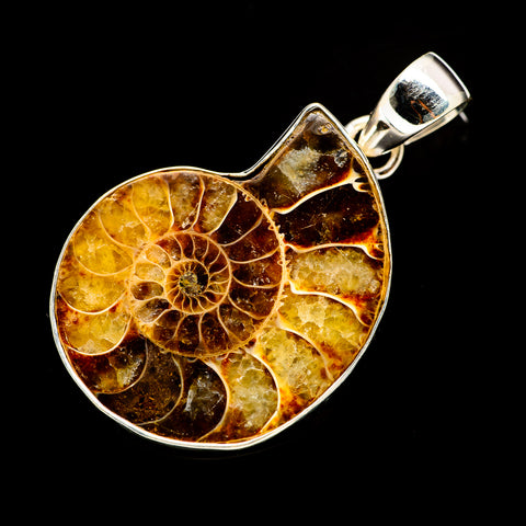 Ammonite Fossil Pendants handcrafted by Ana Silver Co - PD735033
