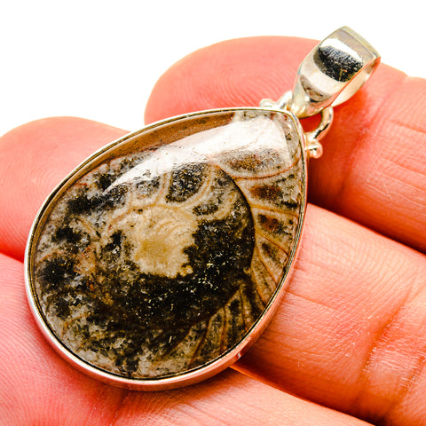 Orthoceras Fossil Pendants handcrafted by Ana Silver Co - PD743765