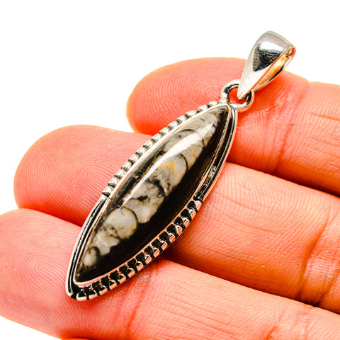 Orthoceras Fossil Pendants handcrafted by Ana Silver Co - PD745769