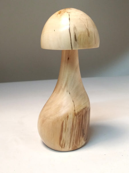 Wild, Whimsical, Maine Mushrooms - Elm #2