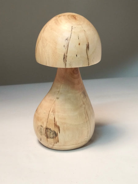 Wild, Whimsical, Maine Mushrooms - Elm #3