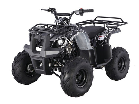 Tao Tao ATA125D Youth ATV - Black Spider
