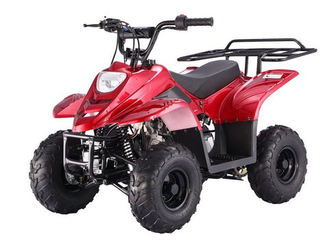 Tao Tao Boulder 110cc Youth ATV - Burgundy