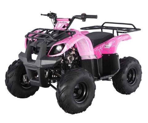 Tao Tao ATA125D Youth ATV - Pink Spider