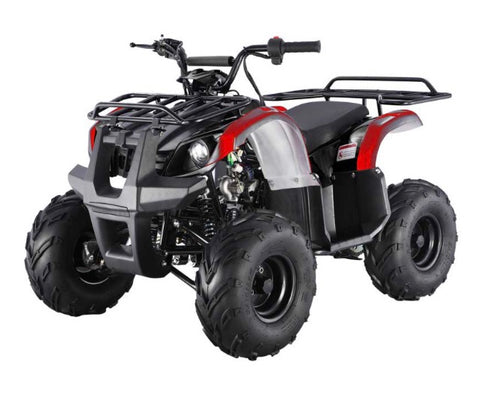 Tao Tao ATA125D Youth ATV - Black/Red