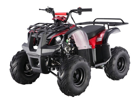 Tao Tao ATA125D Youth ATV - Burgundy