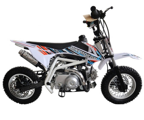 Tao Motors DB20 Pitbike - White