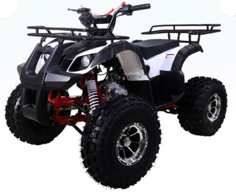Tao Tao New T-Force Youth ATV - White