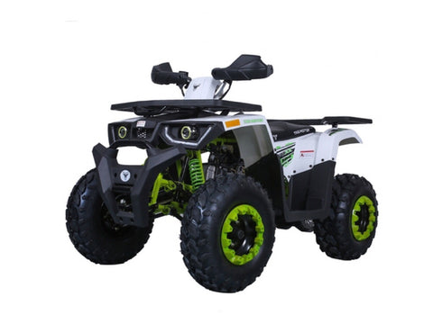 Tao Tao Raptor 200 ATV - Green/White