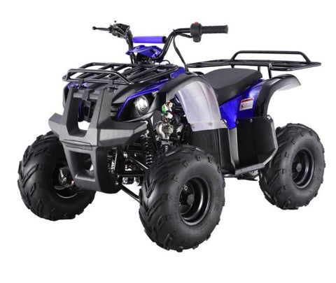 Tao Tao ATA125D Youth ATV - Blue