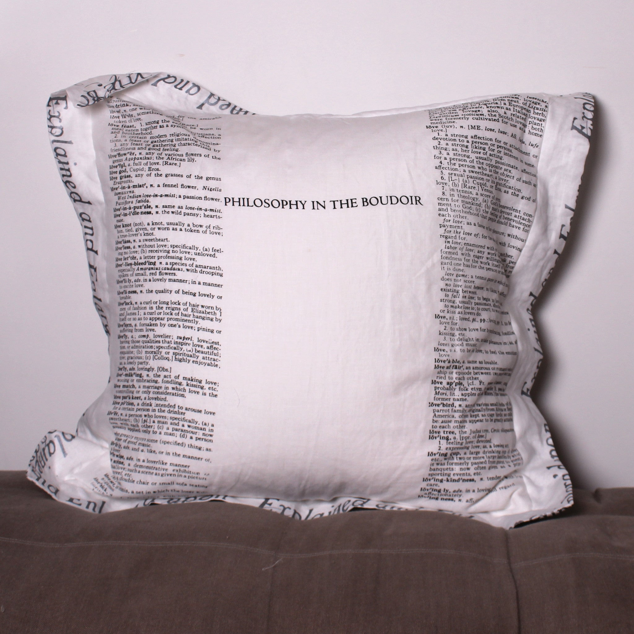 Philosophy in the Boudoir Euro Linen Pillowslip