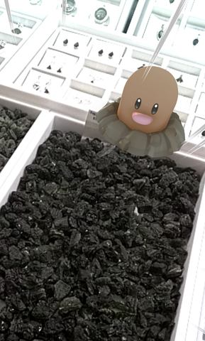 Pokemon Diglett shopping for Moldavite Rough