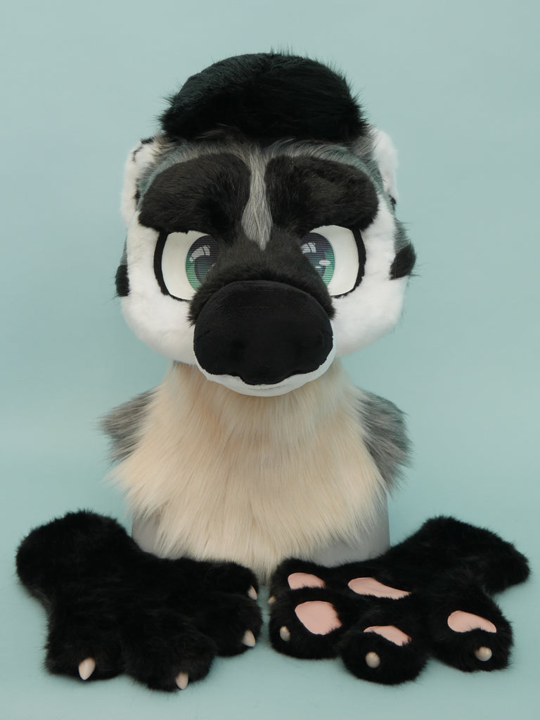 American Badger Partial