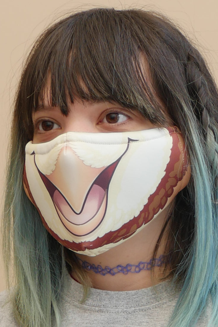 Owl Face Mask