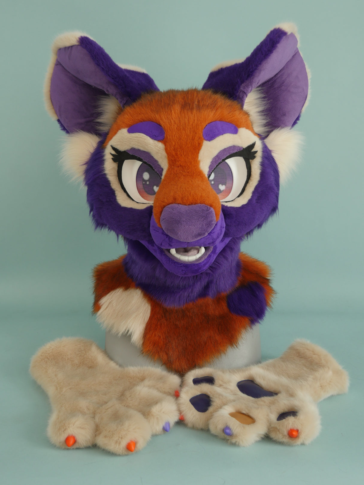 Fizzy Painted Dog Partial