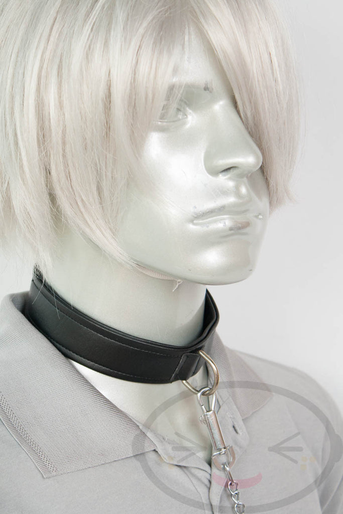 Black Collar and Leash