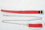 Red Collar and Leash