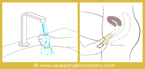 Instructions for Using Sea Sponge Tampons