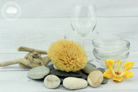 Sea Sparkle™ Honeycomb Wool Natural Dishwashing Sea Sponge