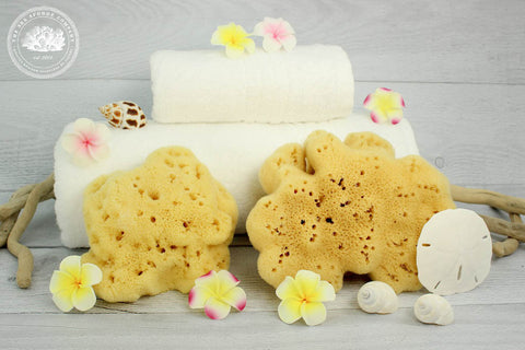 Sea Spa™ Mediterranean Silk Natural Bathing Sea Sponge