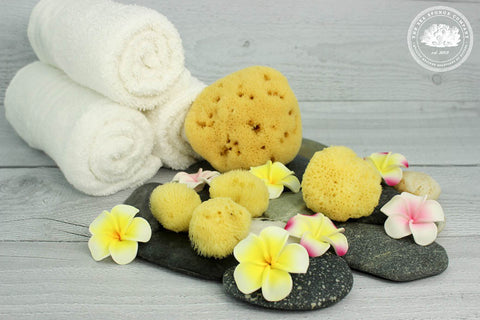 Sea Puffs™ Mediterranean Silk Natural Cosmetic Sea Sponges