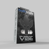 VIBE Training Plugs