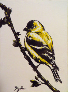 """American Goldfinch"""