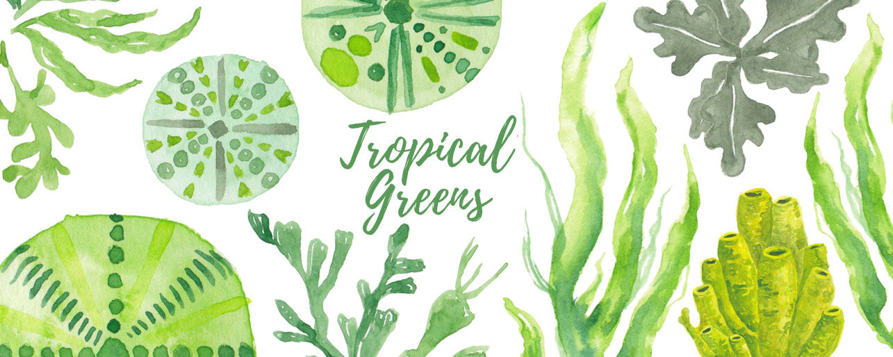 Tropical Greens 2018