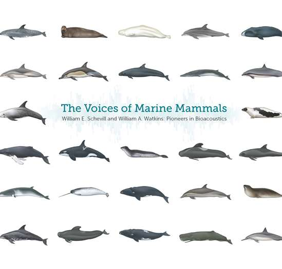 The Voices of Marine Mammals: William E. Schevill and William A. Watkins: Pioneers in Bioacoustics