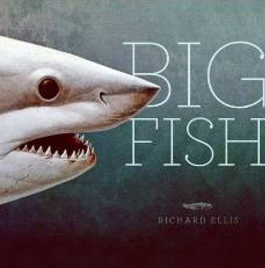 Big Fish, Ellis
