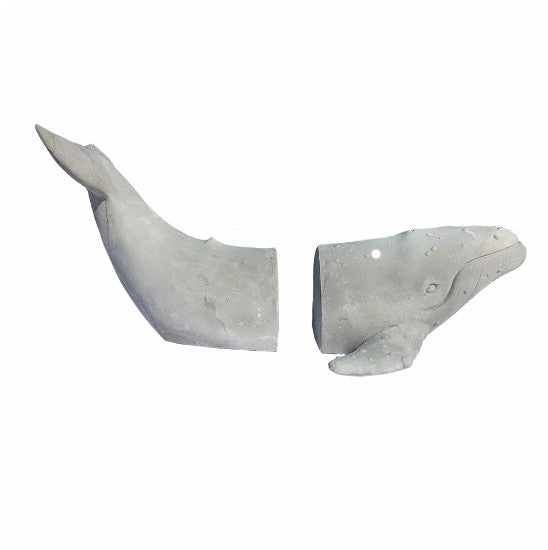 Grey Humpback Whale Bookends