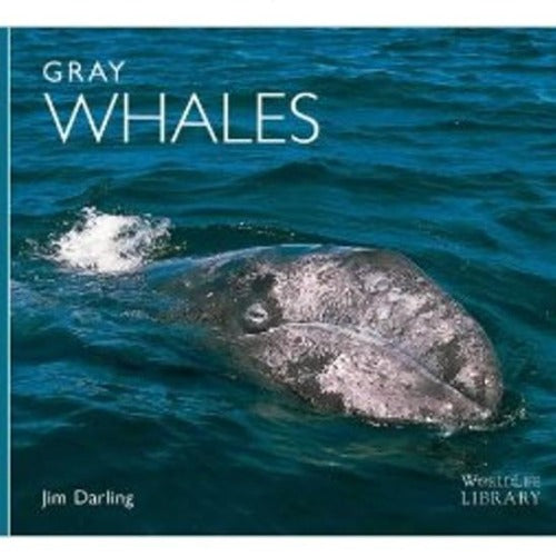 Gray Whales, Worldlife Library