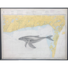 Whale on Vintage Map, Framed Fine Art