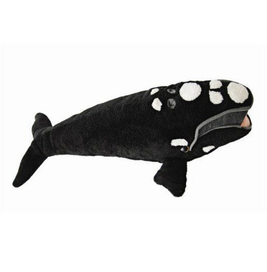 North Atlantic Right Whale Plush