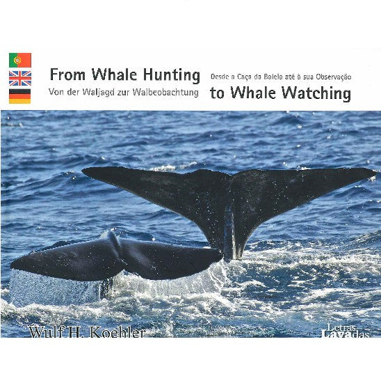 From Whale Hunting to Whale Watching