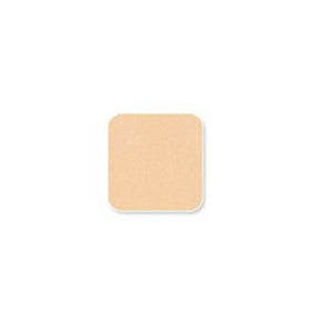 Cute Press Evory Stellar Oil Control Foundation Powder SPF30/PA+++