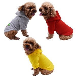Dog Hoodie Sweater Cute Outfits