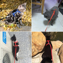 Load image into Gallery viewer, Adjustable Pet Cat Harness & Leash