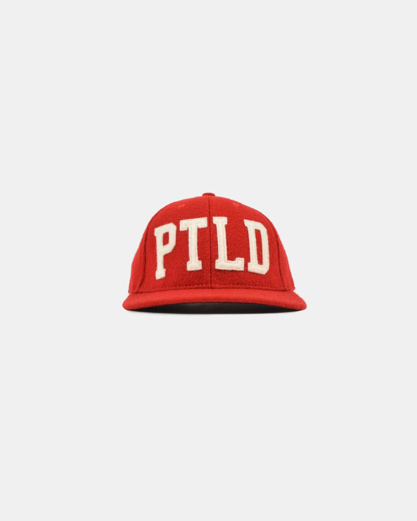 """PTLD"" Baseball Hat"