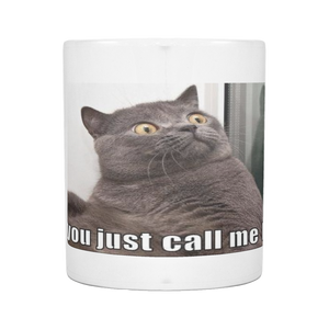 FAT CAT CALLED OUT ON 11 OUNCE COFFEE MUG