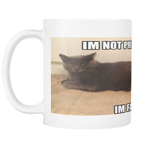 CAT MEME OF PREGNANT CAT ON 11 OUNCE COFFEE MUG