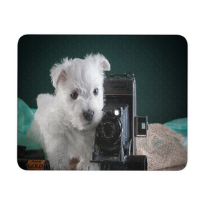Puppy Photographer cute mouse pad