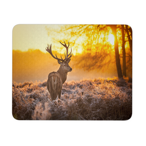 DEER AT SUNSET MOUSEPAD