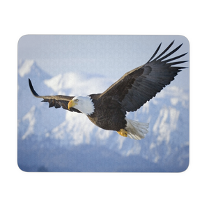 Graceful Eagle flight mousepad